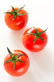 Three fresh tomato Royalty Free Stock Photography