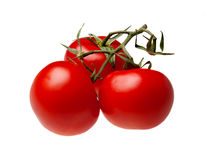Three fresh tomatoes Stock Photos