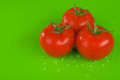 Three fresh tomatoes Stock Photos