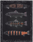 Three fresh trout from the scheme Royalty Free Stock Photography