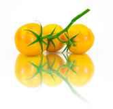 Three fresh yellow tomatoes on a white background Royalty Free Stock Image