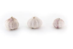 Three fresh Young bulbs of garlic neatly isolated on white background Royalty Free Stock Photography