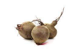 Three freshly harvested beetroots Royalty Free Stock Image
