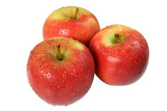 Three freshly washed apples. Royalty Free Stock Photography