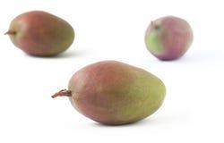 Three freshness mango on white background. Three tropical freshness mango on white background Royalty Free Stock Photo