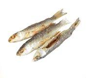 Three fried fish Stock Photos