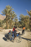 Three friends cycling in south Morocco Royalty Free Stock Images