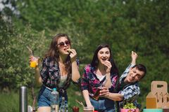 Group of friends having picnic in park. stock photography