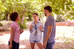 Three friends having an interesting discussion Royalty Free Stock Image