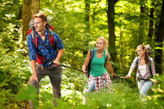 Three friends hiking through the forest Royalty Free Stock Photos