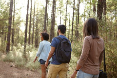 Three friends hiking in a forest Stock Photos