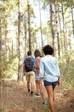 Three friends on a hiking trail Royalty Free Stock Images