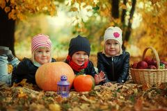 Three friends kids lying on autumn leaves with pumpkins and apple Royalty Free Stock Photography