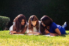 Three Friends Studying Royalty Free Stock Photography