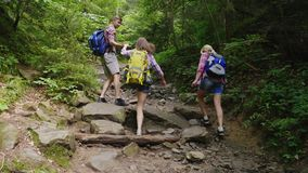 Three friends of tourists are walking along a mountain path in the forest. Back view. Active and healthy lifestyle stock video footage