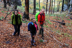 Three friends trekking through a forest Royalty Free Stock Photos