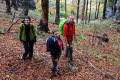 Three friends trekking through a forest Royalty Free Stock Photos