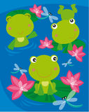 Three frogs. Illustration of three happy frogs Stock Images