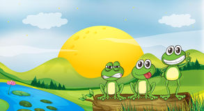 Three frogs at the riverbank. Illustration of three frogs at the riverbank Royalty Free Stock Photo