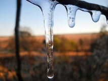 Three Frozen Drops Stock Image
