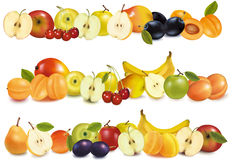 Three fruit design borders Stock Image