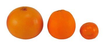 Three fruits Royalty Free Stock Photos