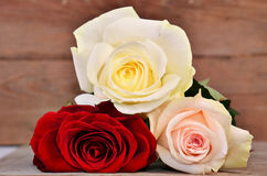 Three full-blown roses on wood background. Bouquet of three roses lying on a wooden surface Stock Images