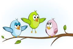 Three funny birds Royalty Free Stock Photos