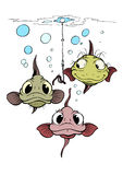 Three funny fishes Stock Photos