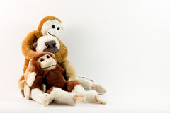 Three Funny Monkeys Royalty Free Stock Photos