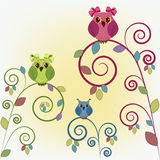 Three funny owl on the branches Stock Photo