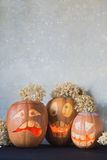 Three funny pumpkin for Halloween with flowers on a grey background Stock Photos
