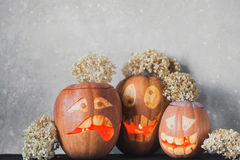 Three funny pumpkin for Halloween with flowers on a grey background Royalty Free Stock Photography