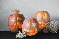 Three funny pumpkin for Halloween with flowers on a grey background Stock Image