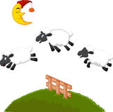 Three Funny Sheep cartoon Jumping Over A Fence Stock Photography