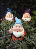 Three Garden Gnomes. In the garden royalty free stock image