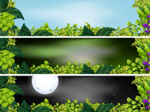 Three garden scenes at different times of day Royalty Free Stock Photos