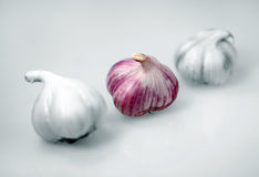 Three Garlic Royalty Free Stock Photos