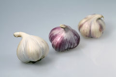 Three Garlic Royalty Free Stock Photography
