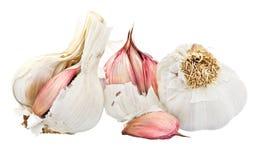 Free Three Garlic Bulbs Stock Photos - 9113553