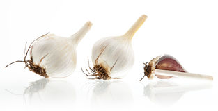 Three garlic bulbs on white. Three garlic bulbs  on white background Royalty Free Stock Photos