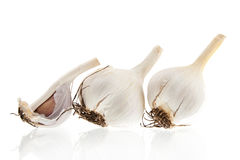 Three garlic bulbs on white. Three garlic bulbs isolated on white background Stock Photo