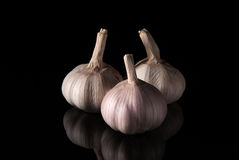 Three garlic with reflection on black background. Isolated objects Royalty Free Stock Images