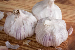 Three garlics on wooden table Royalty Free Stock Photos