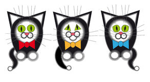 Three gay black cat. Black cats with colored ribbons Stock Images