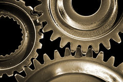 Three gears Stock Images