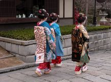 Three geishas Royalty Free Stock Photo
