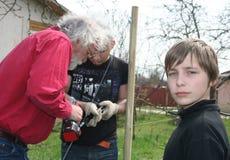 Three generations gardeners stock photography