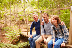 Three generations of men on a bridge in a forest, portrait Stock Photo