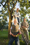 Three generations of men picking apples, close-up of boy (9-11) smiling Royalty Free Stock Photography